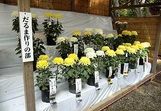 鹿嶋市菊花展