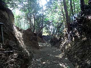 現在の粟生城跡